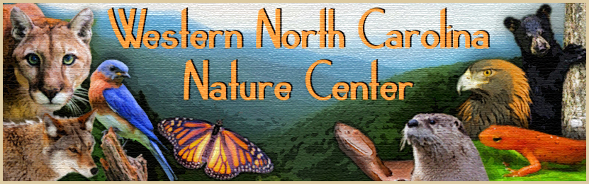 Wnc Nature Center Membership